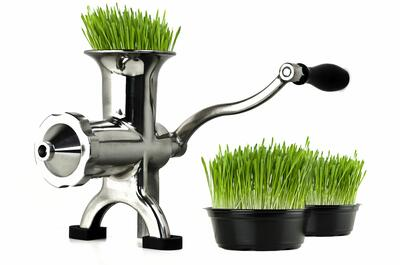 Wheatgrass Juicer livestyle
